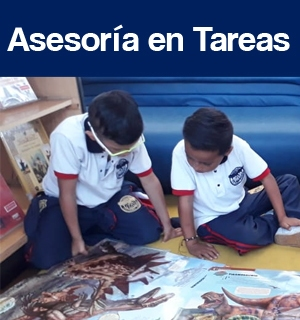 gallery/asesoria